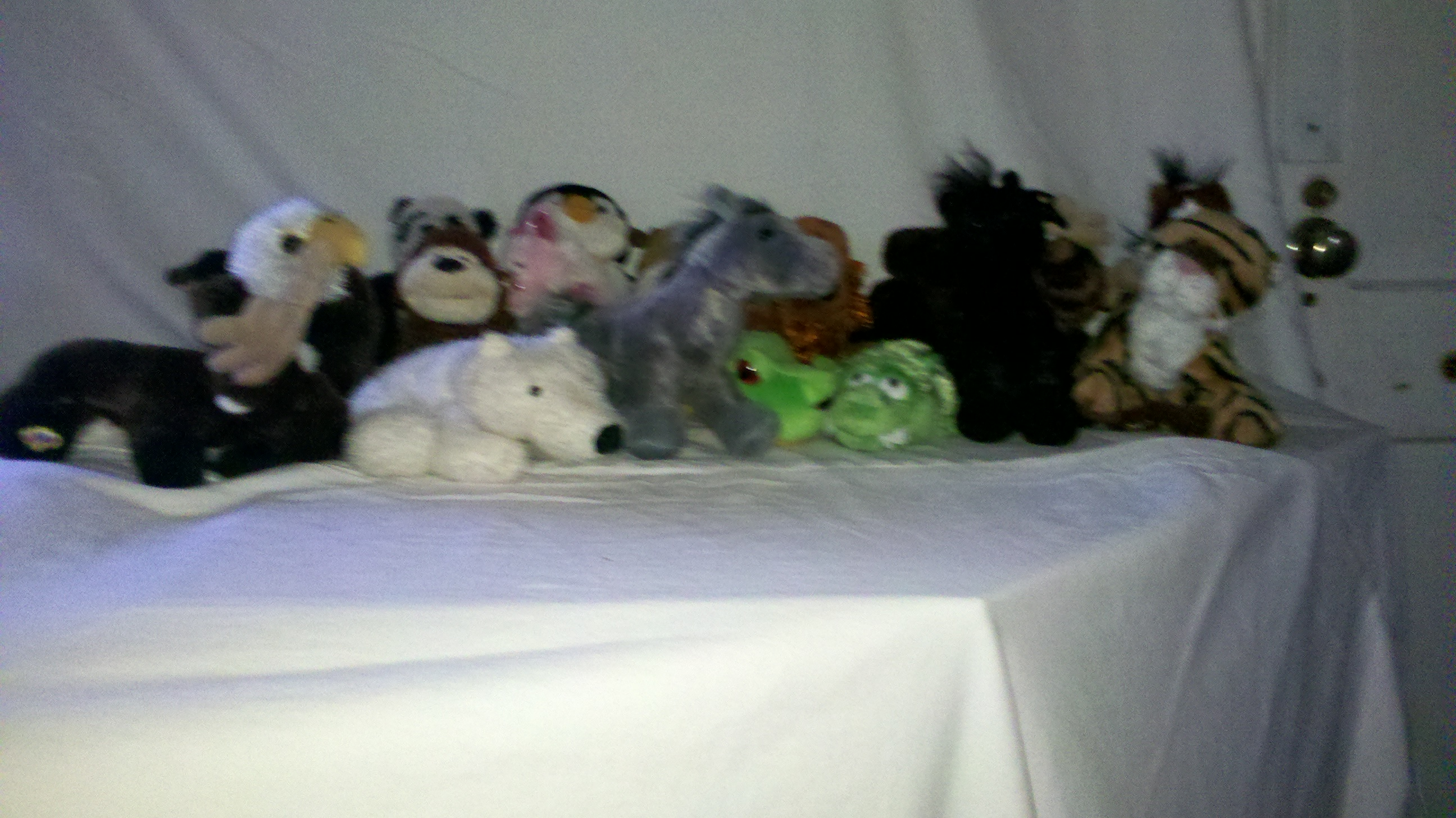 Over 100 Webkinz without tags