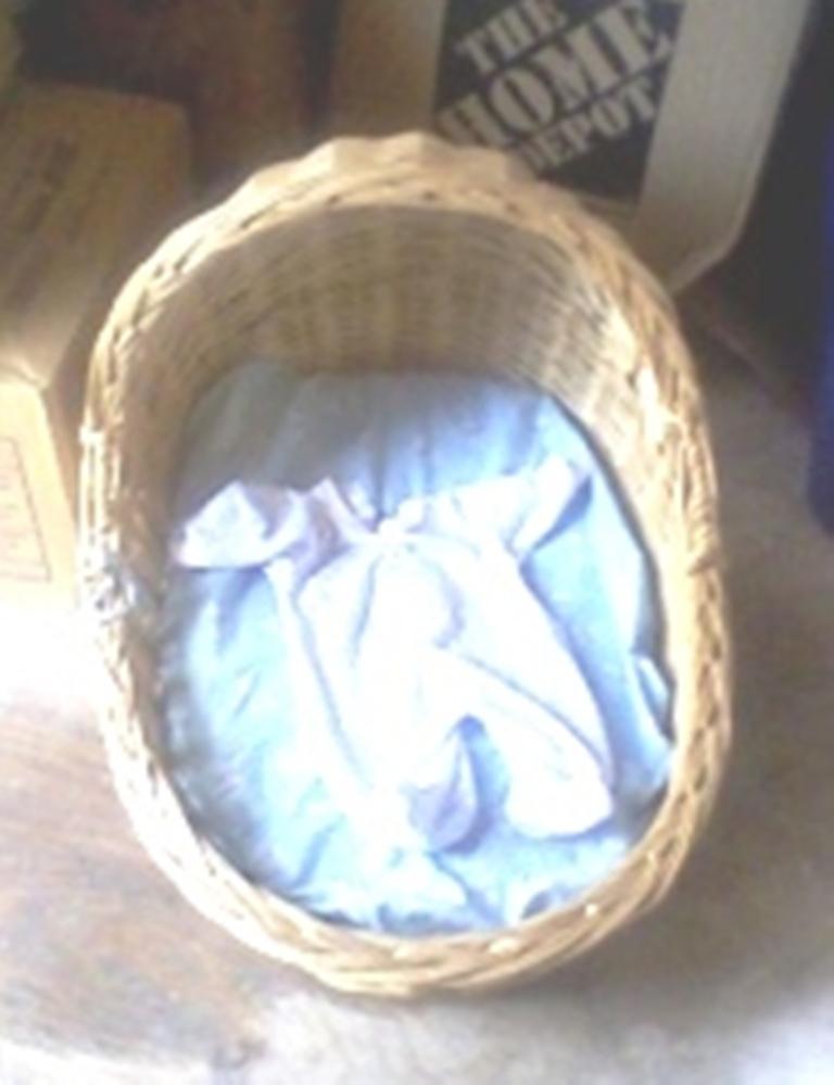 Baby Wicker Basinet w/ mattress