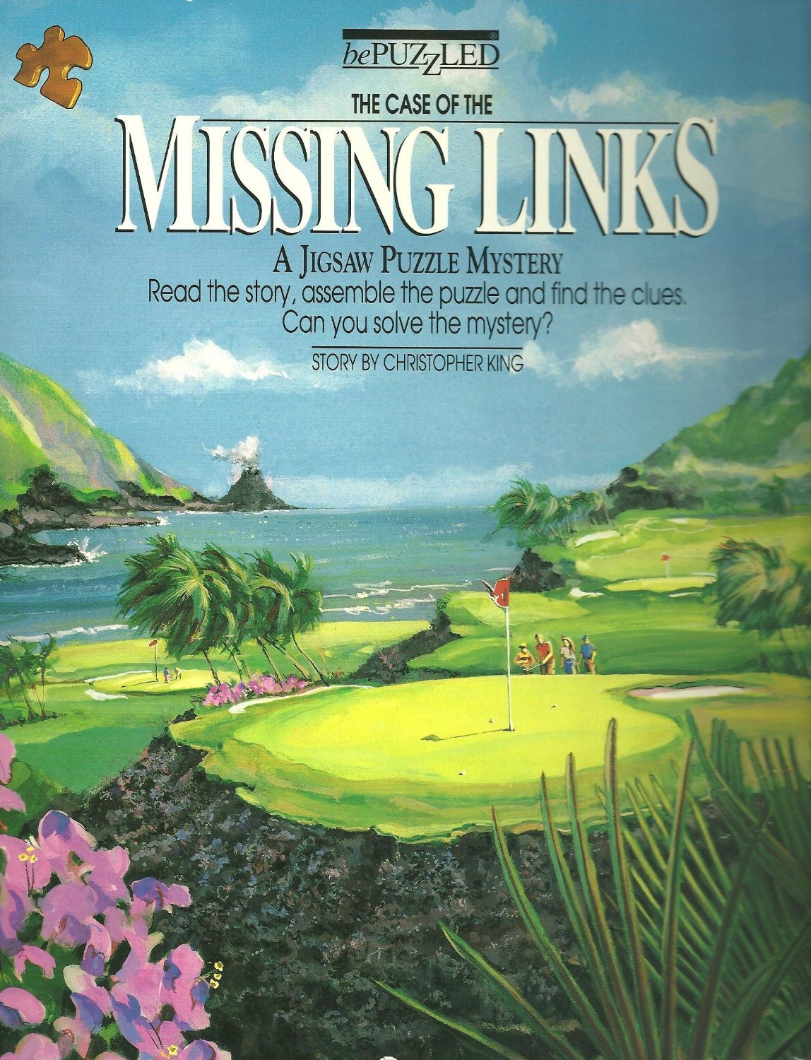 The Case of the Missing Links: A Jigsaw Puzzle Mystery (500 Piece