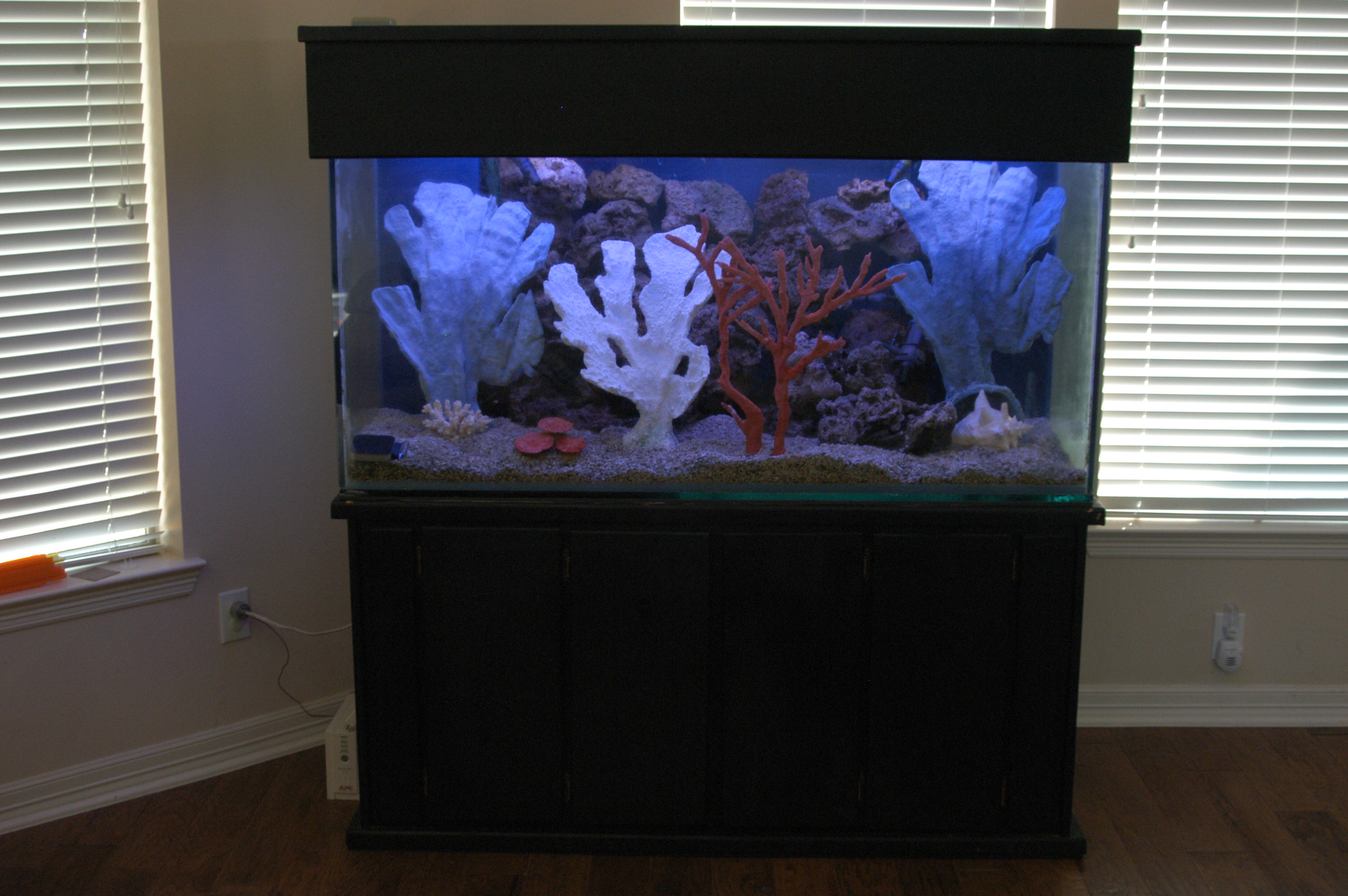 180 gallon aquarium for sale thread 4 21 07 180 gallon for Koi for sale san diego