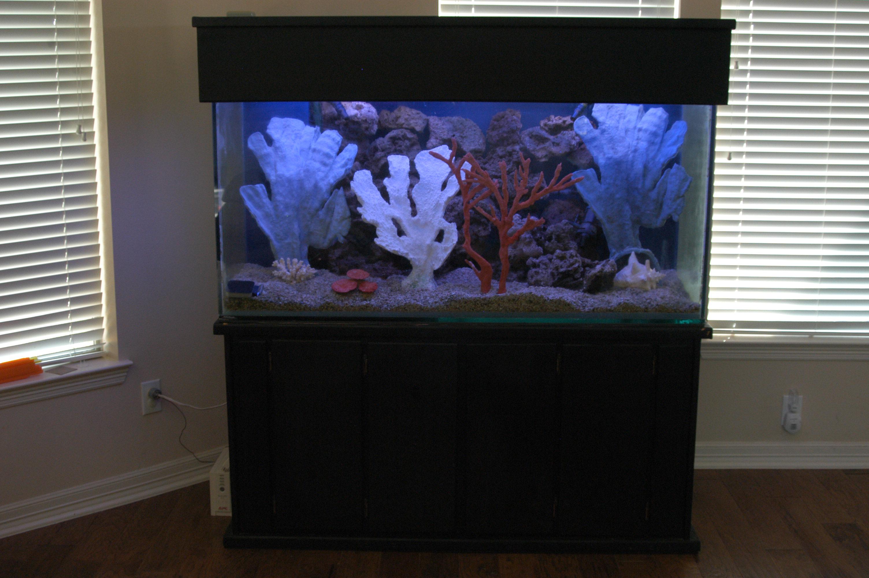 how to make saltwater aquarium filter