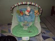 Winnie the pooh bouncy seat