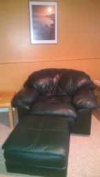 Dark Green Leather Lounge Chair