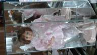 Ballerina Doll in Mirrored Case
