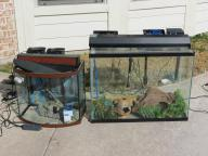 2 Fish Tanks - Loaded with equiptment and accessories!