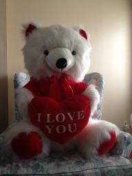 Stuffed I LOVE YOU Sitting Bear