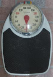 TAYLOR PROFESSIONAL SCALE