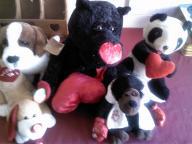 Love Stuff Animals