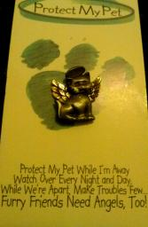Protect my pet (cat) pin