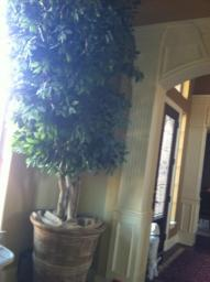 Faux Ficus tree 12 ft tree w/huge ceramic pot