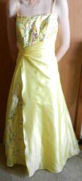 Yellow Prom/Pageant Dress