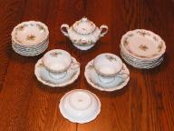 Johann Haviland 'Moss Rose' Bavaria Germany Fine China - 22pc set