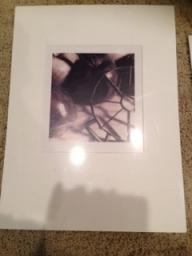 Matted Apple Photo -can purchase individually or set of 4 for $35