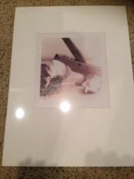 Matted Garlic Photo-can purchase singly or set of 4 for $35