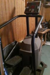 HEALTH CLUB MODEL STEPPER