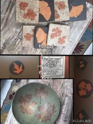 Petrified Forest Bowl, Coasters and Plaques