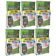 grassology grass seed