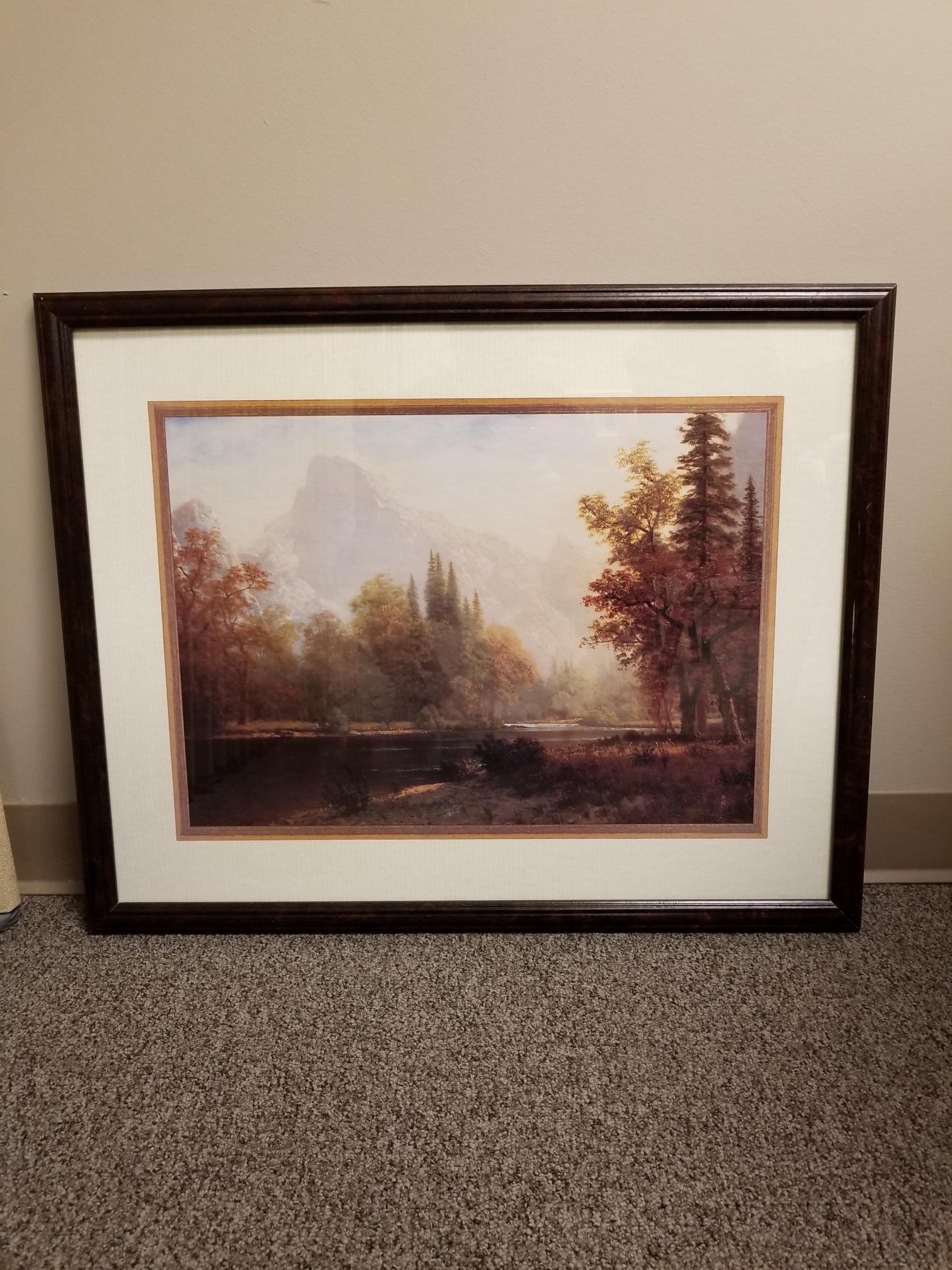 Framed Wall Art Forest Scene